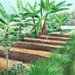 Jardin productif à La Réunion